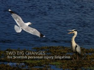 Argument between a Seagull and a Heron at Lossiemouth, Moray